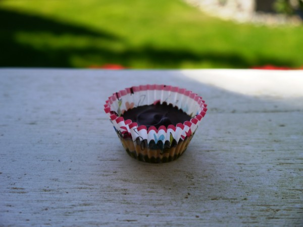 PB+J Cup Solo
