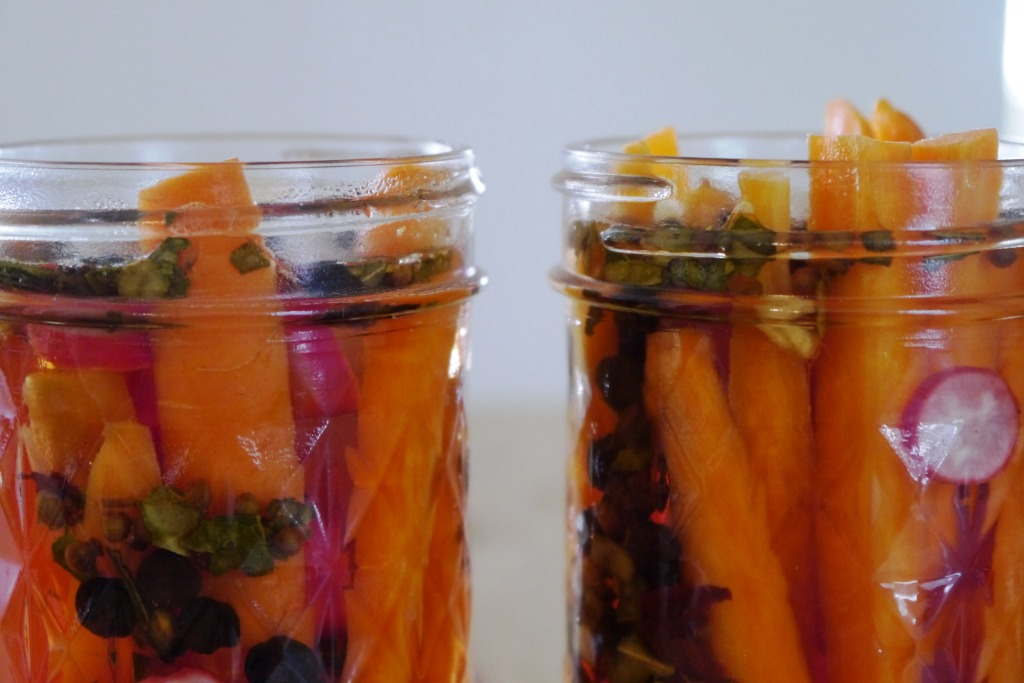 Refrigerator Pickled Carrots